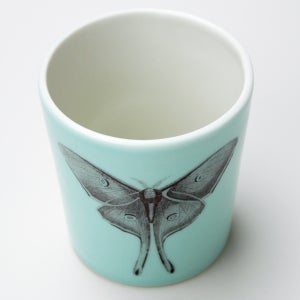 Image of 16oz tumbler with luna moth, aqua