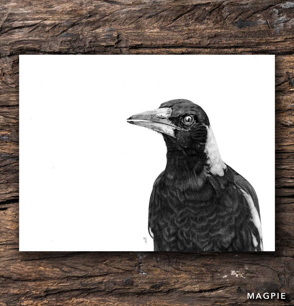 Image of Magpie Greeting Card