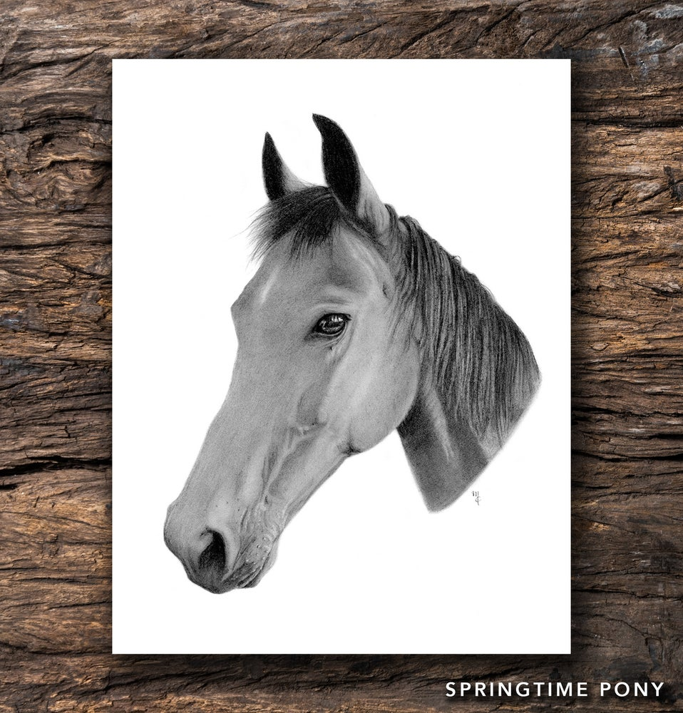 Image of Springtime Pony Greeting Card