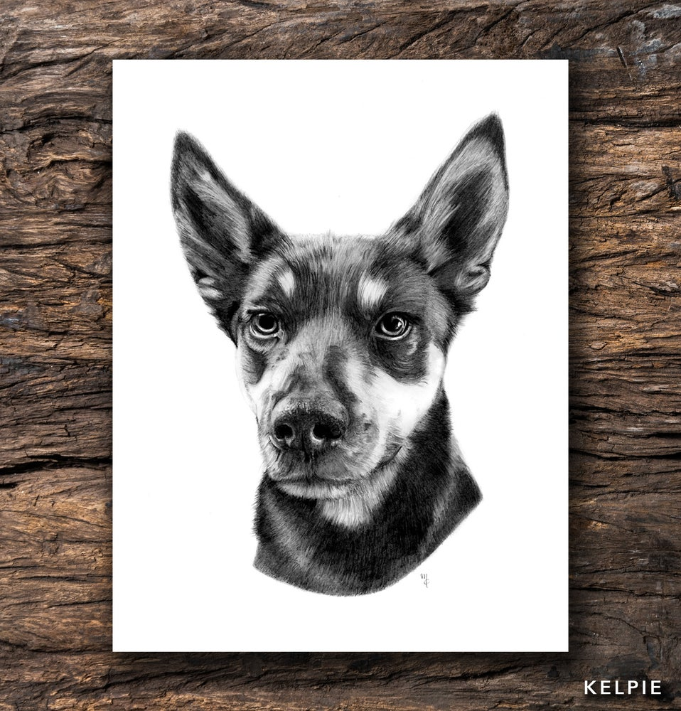 Image of Kelpie Greeting Card