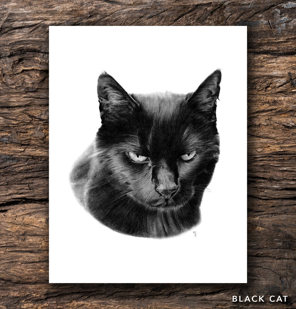 Image of Black Cat Greeting Card