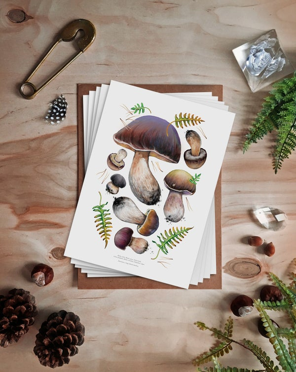 Image of Mega Mushroom Print Collection