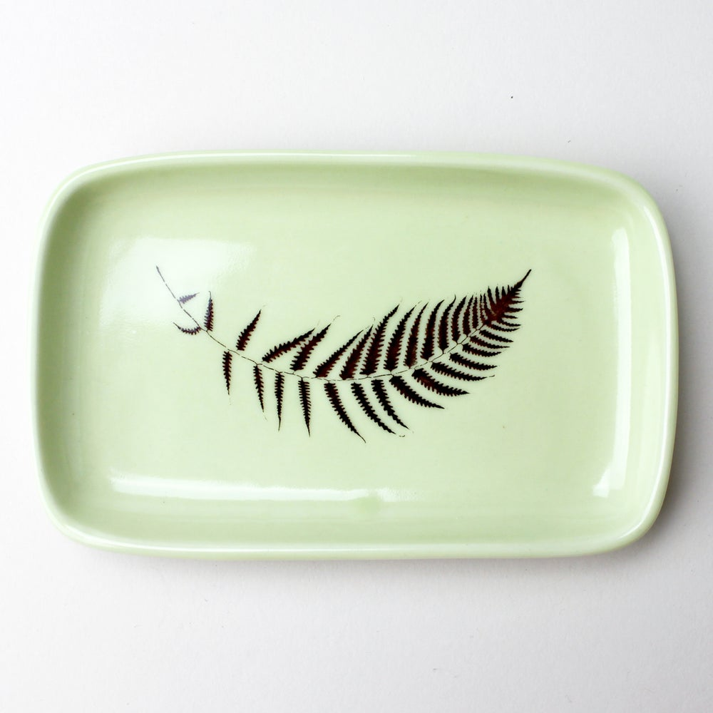 Image of small rectangular tray with lady fern, avocado
