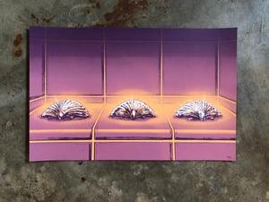 Image of The Three Seashells (pink purplish variant)