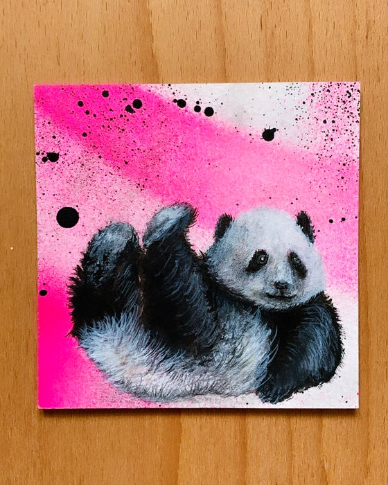 Image of Panda - 25% Off