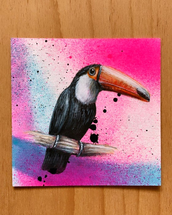Image of Toucan - 25% Off