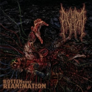 Image of PIGHEAD  - Rotten Body Reanimation CD