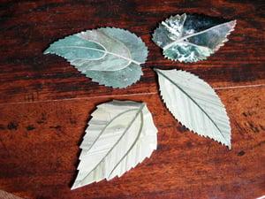 Image of Stone leaf coasters.