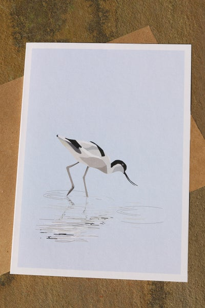 Image of Avocet Fishing Greeting Card