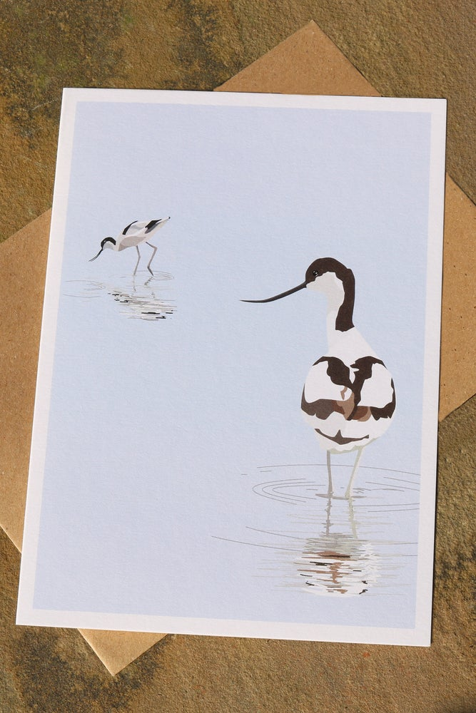 Image of Avocets Greeting Card