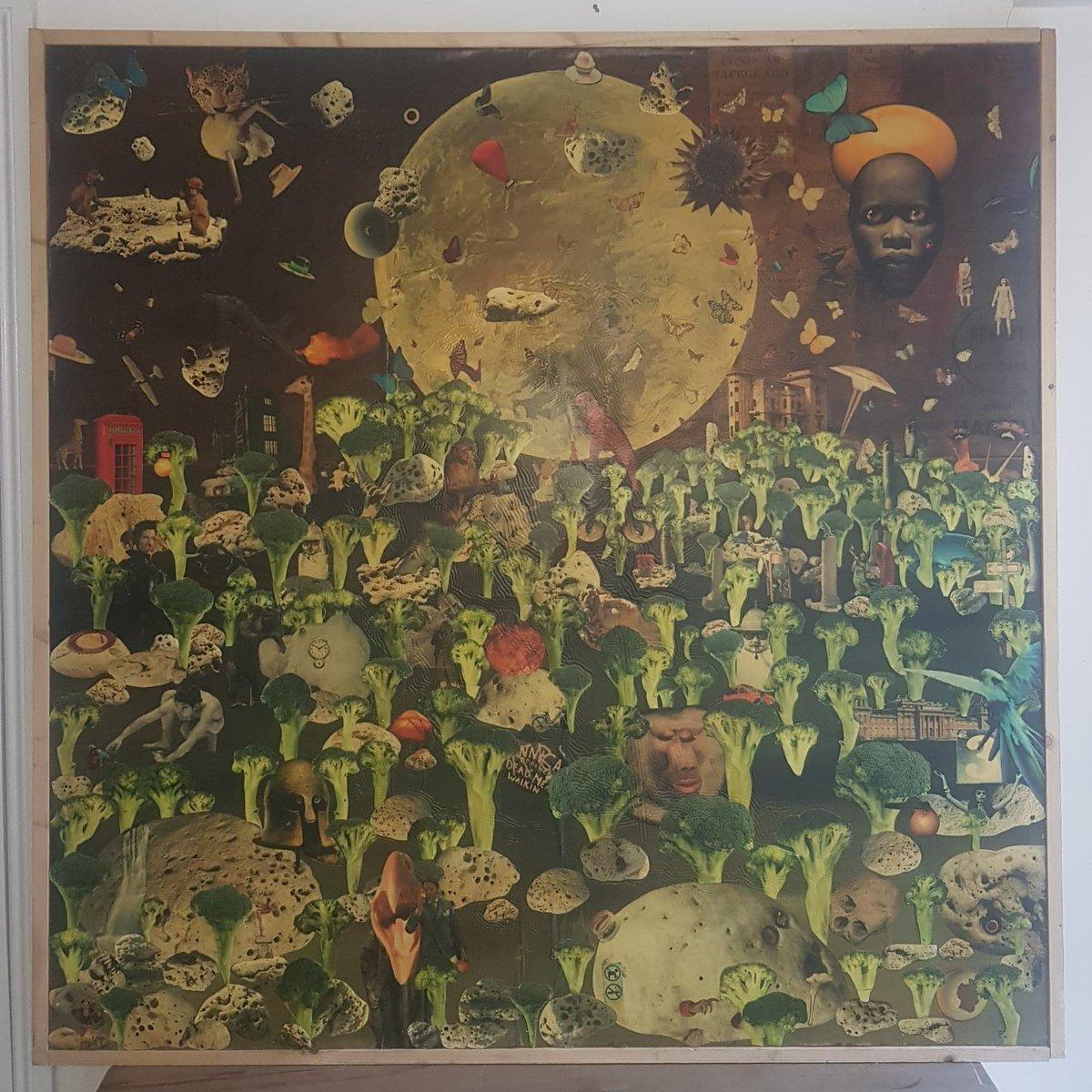 Image of Broccoli Jungle (2006)