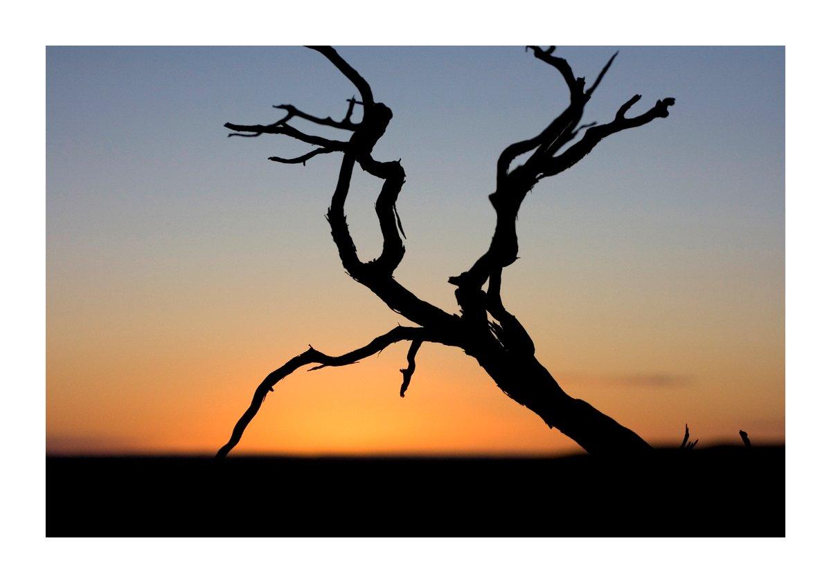 Image of Australian sunset print