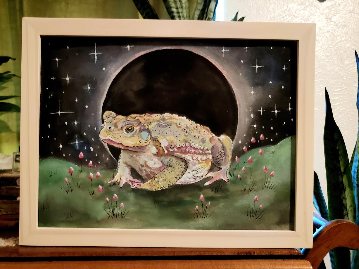 Image of Magic Toad