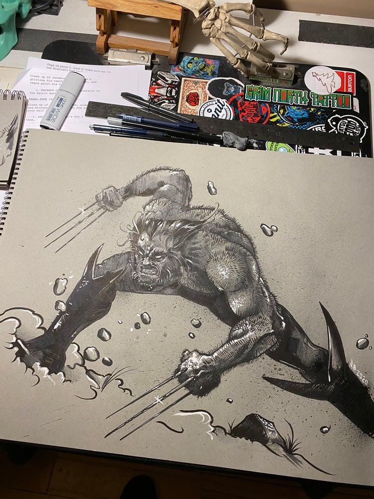 Image of Wolverine 18 x 24 sketch