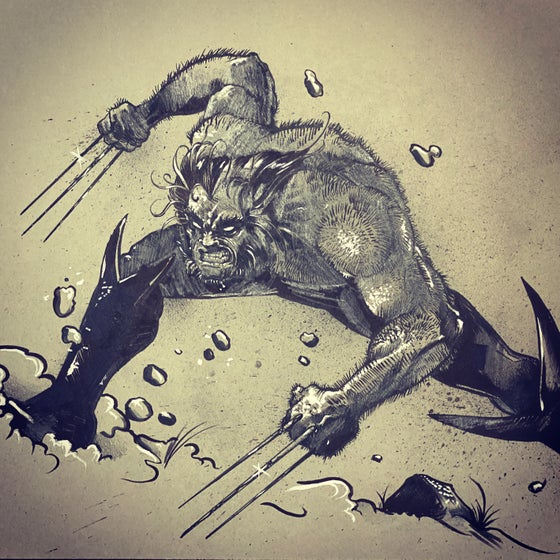 Image of Wolverine 18 x 24 sketch