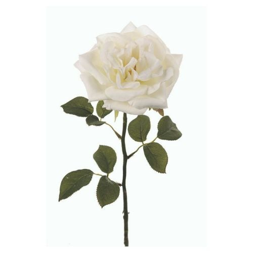 Image of Faux White Cabbage Rose