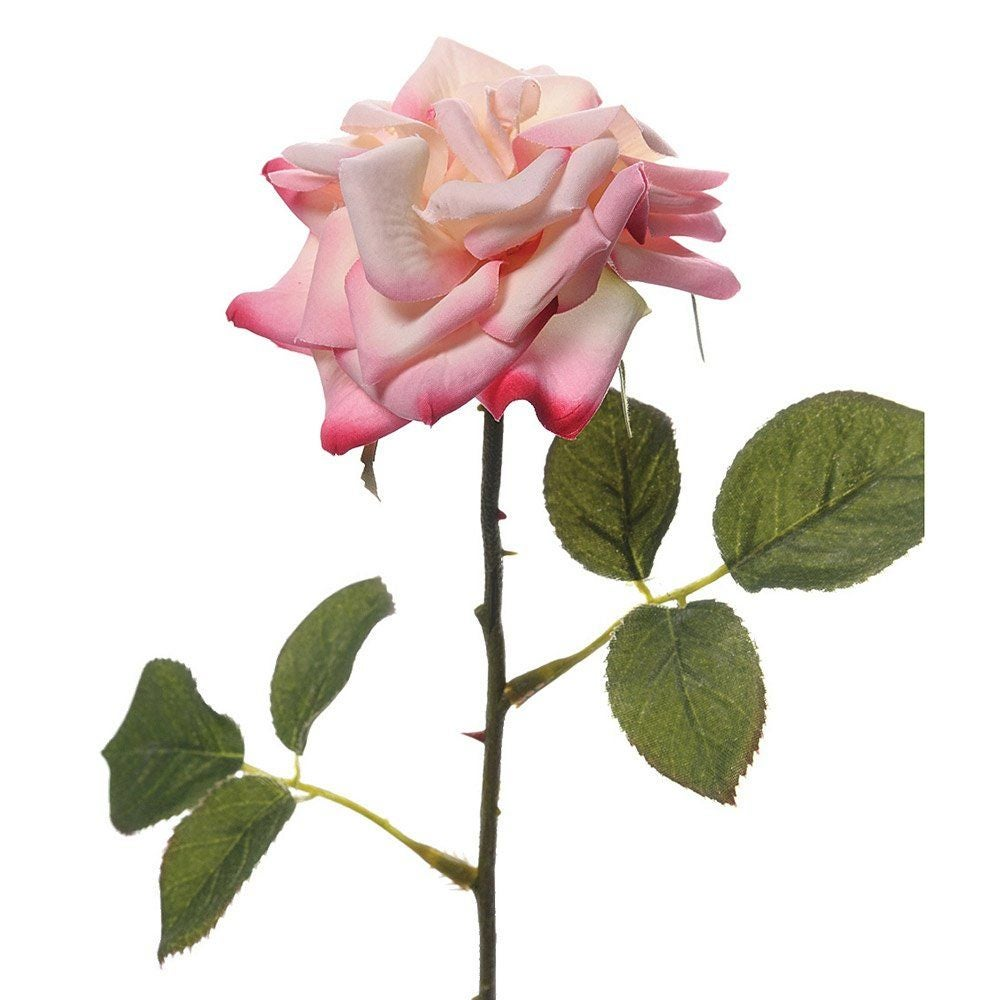 Image of Faux Pink English Rose