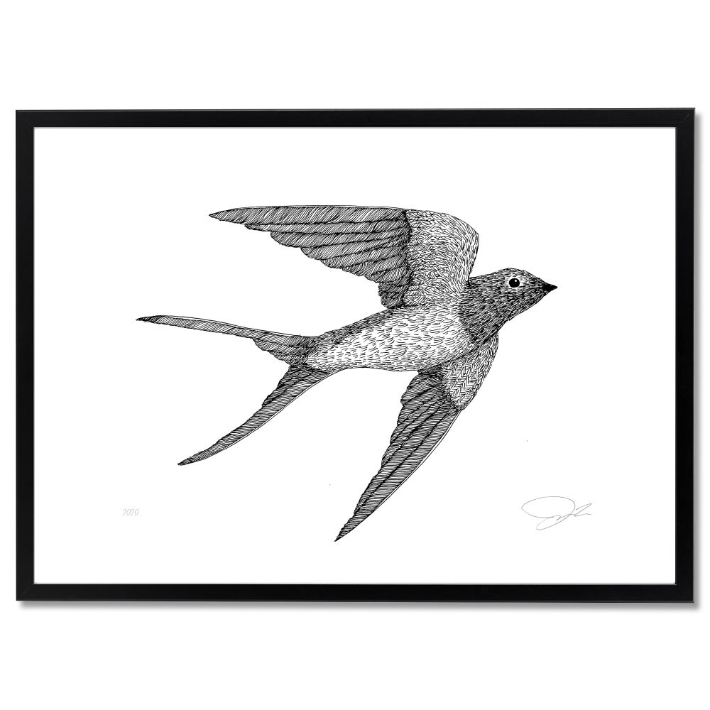 Image of Print Swallow