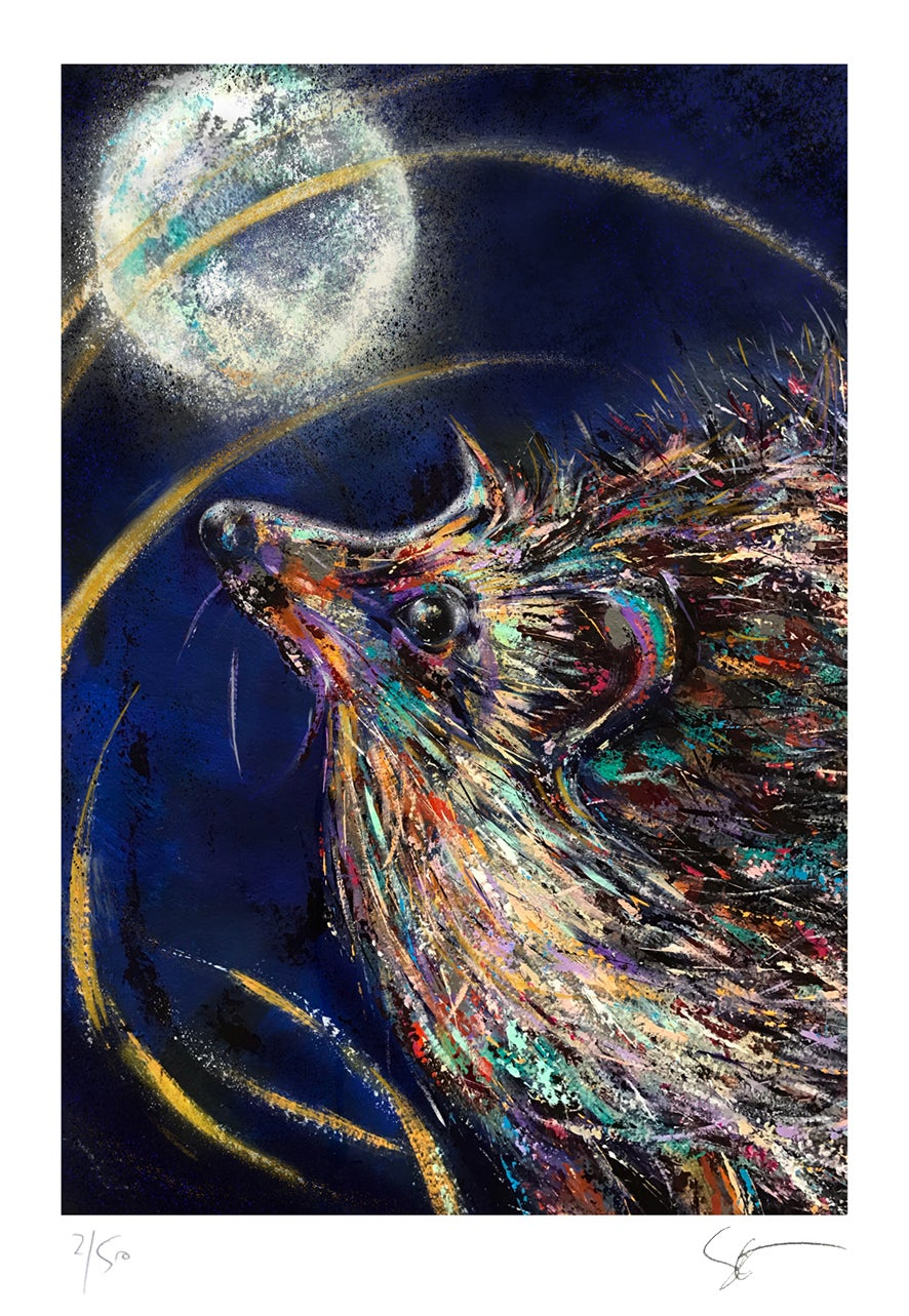 Hedgehog and the Moon - Limited Edition Giclée art print. All profits to Hedgehog Charities