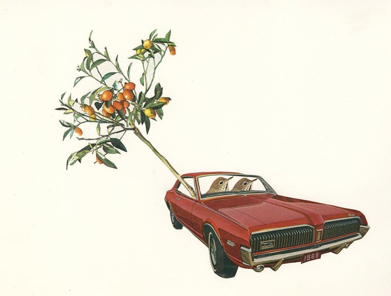Image of Harold and Maude abscond with an ailing kumquat tree. Limited edition collage print.