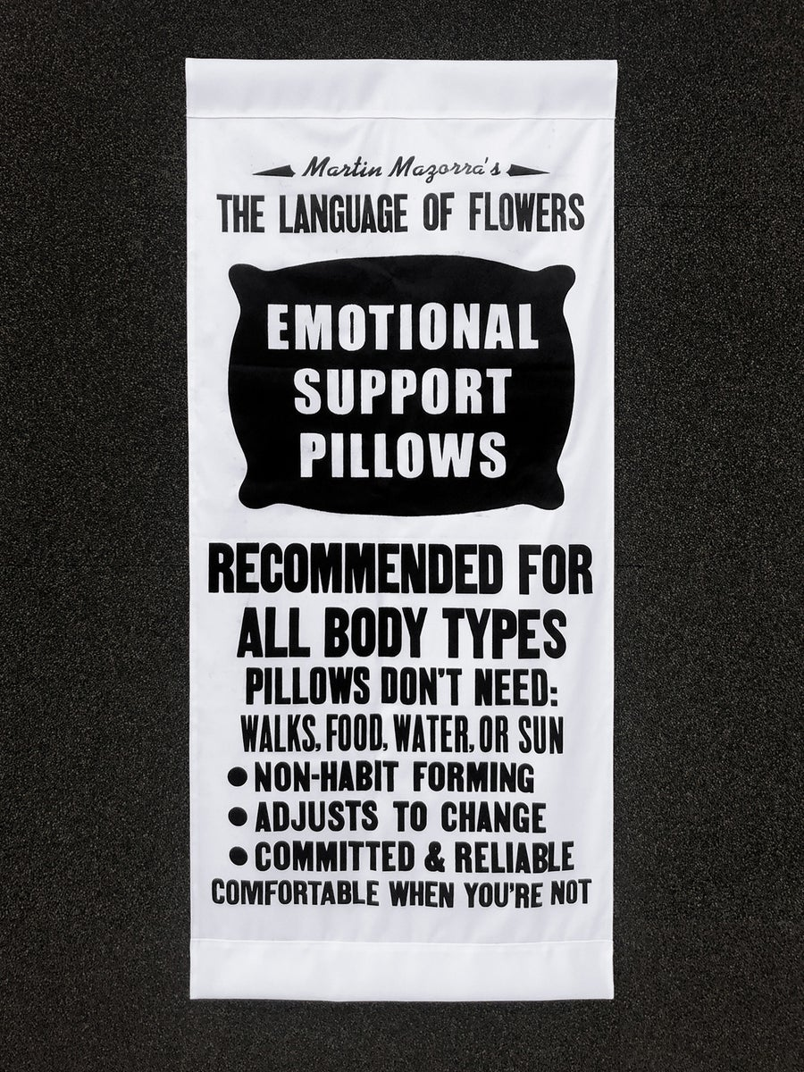 Image of Emotional Support Pillows