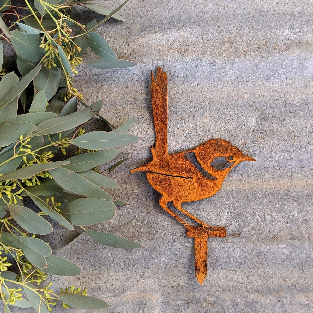 Rusty Wren