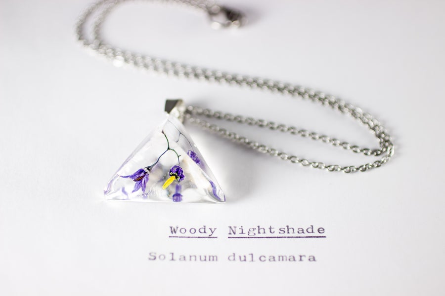 Image of Woody Nightshade (Solanum dulcamara) - Prism Necklace #8