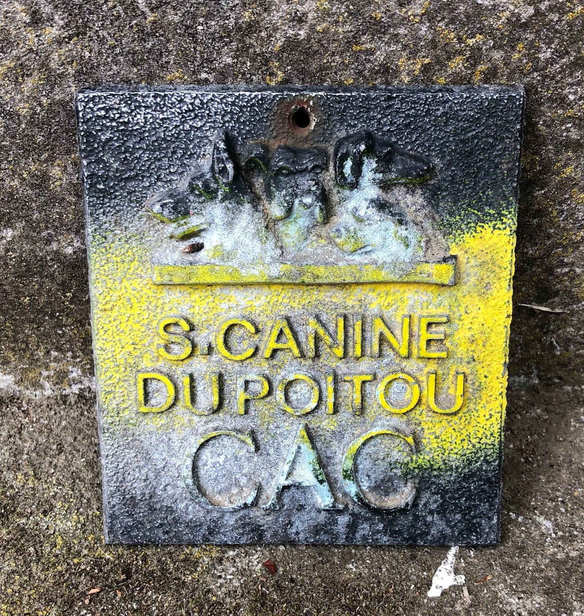 Image of Metal Plaque French Dog Show