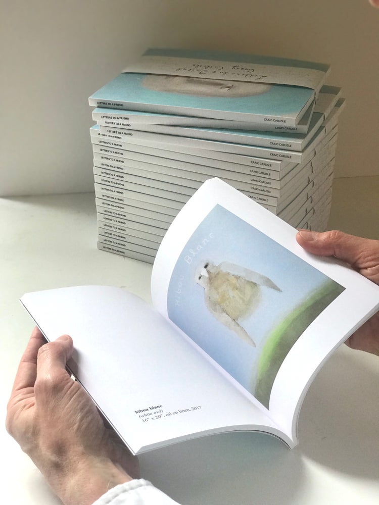 Image of Letters to a Friend - Book