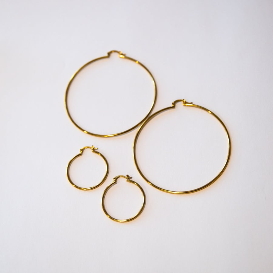 Image of The Gold Hoops
