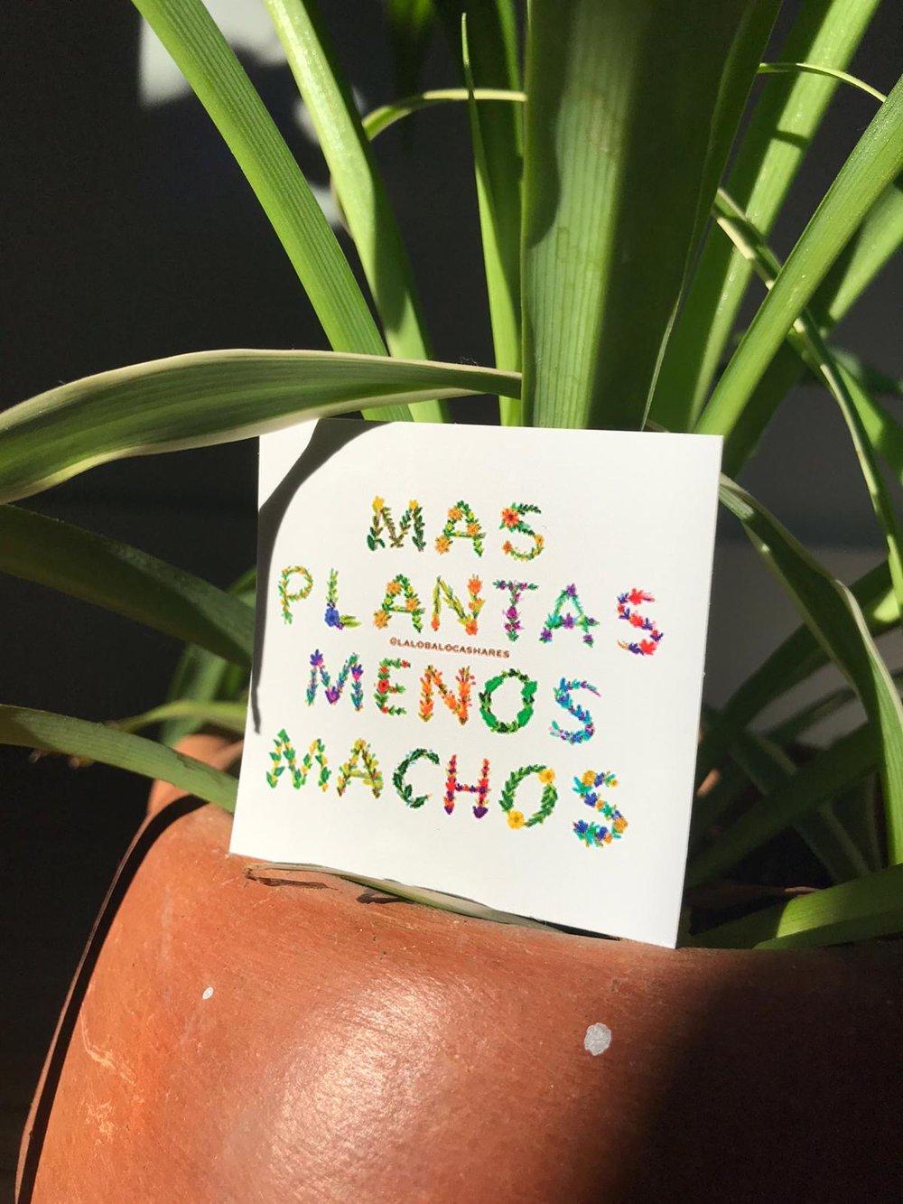 Image of MAS PLANTAS 2*2 sticker