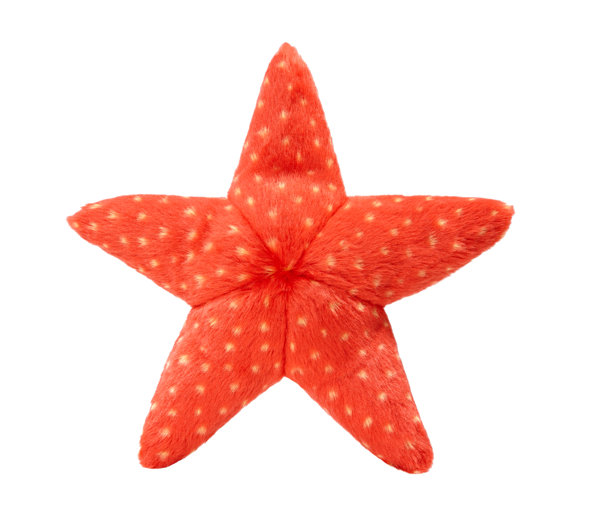 Ziggy Starfish -Fluff & Tuff