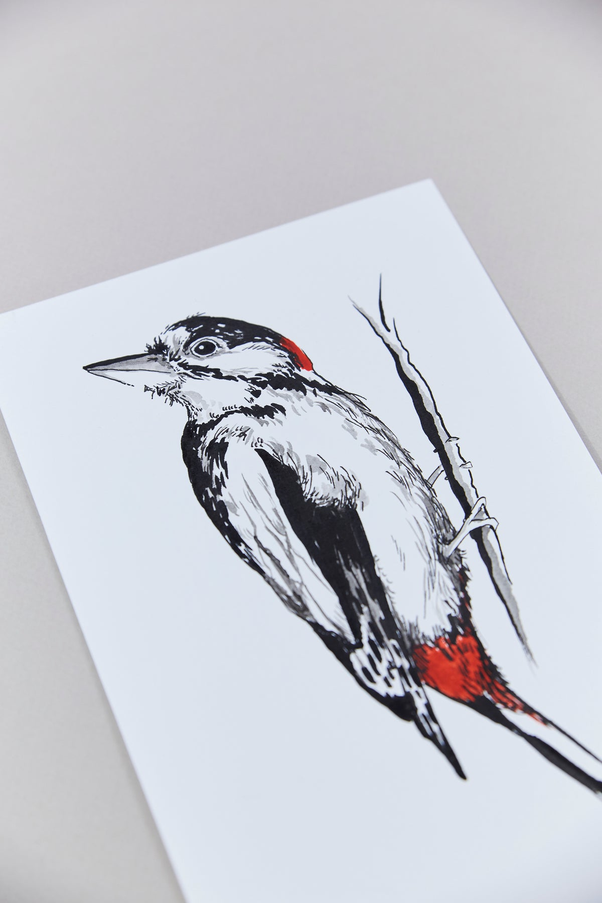 British Birds – Woodpecker