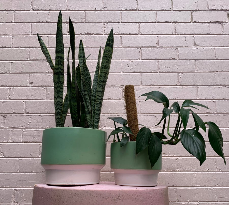 Image of Douglas & hope footed pot 4 colours