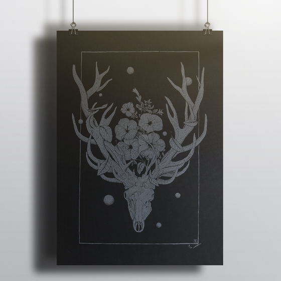 Image of Deer