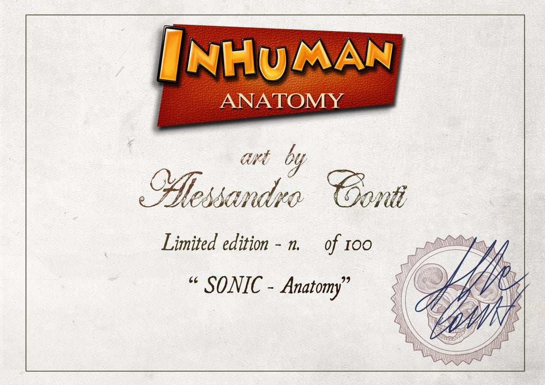 Image of SONIC THE HEDGEHOG - ANATOMY  limited edition of 100 Giclèe print on fine art canvas