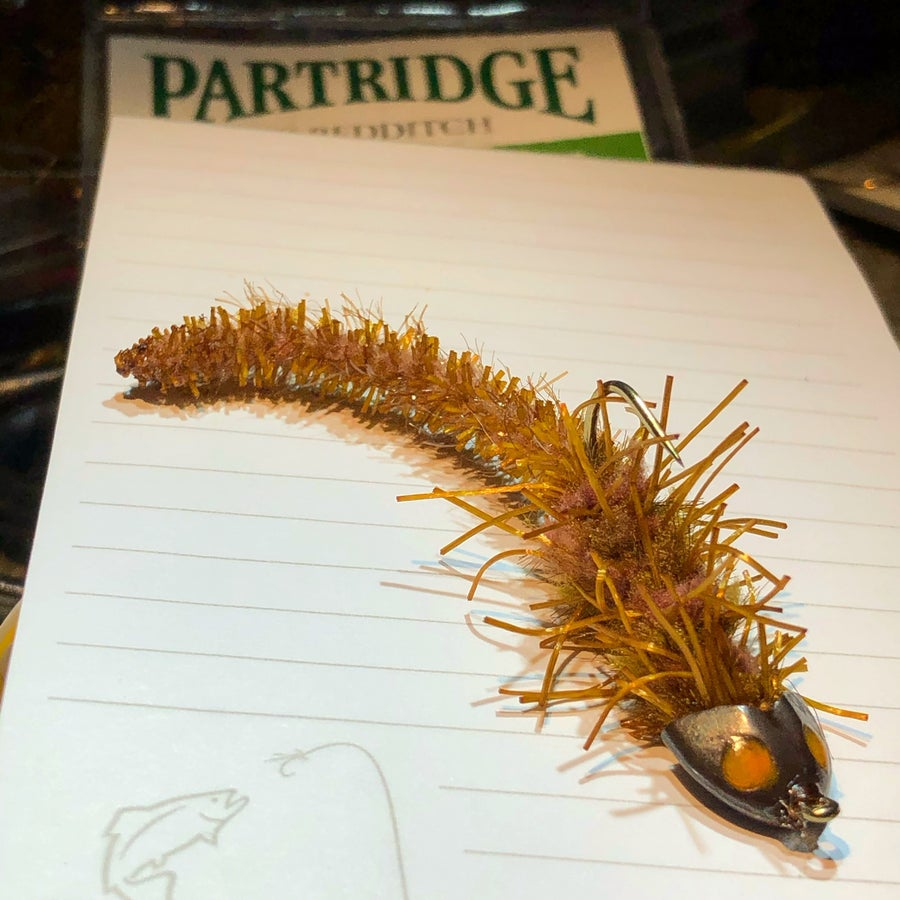 Image of Hairy Sculpin