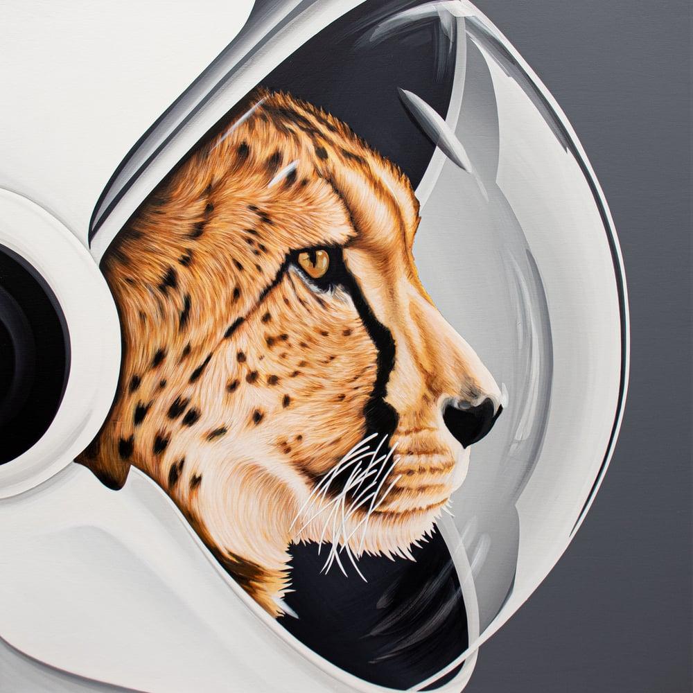 Image of Space Cheetah