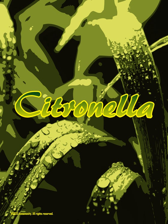Image of Citronella Soap Bar