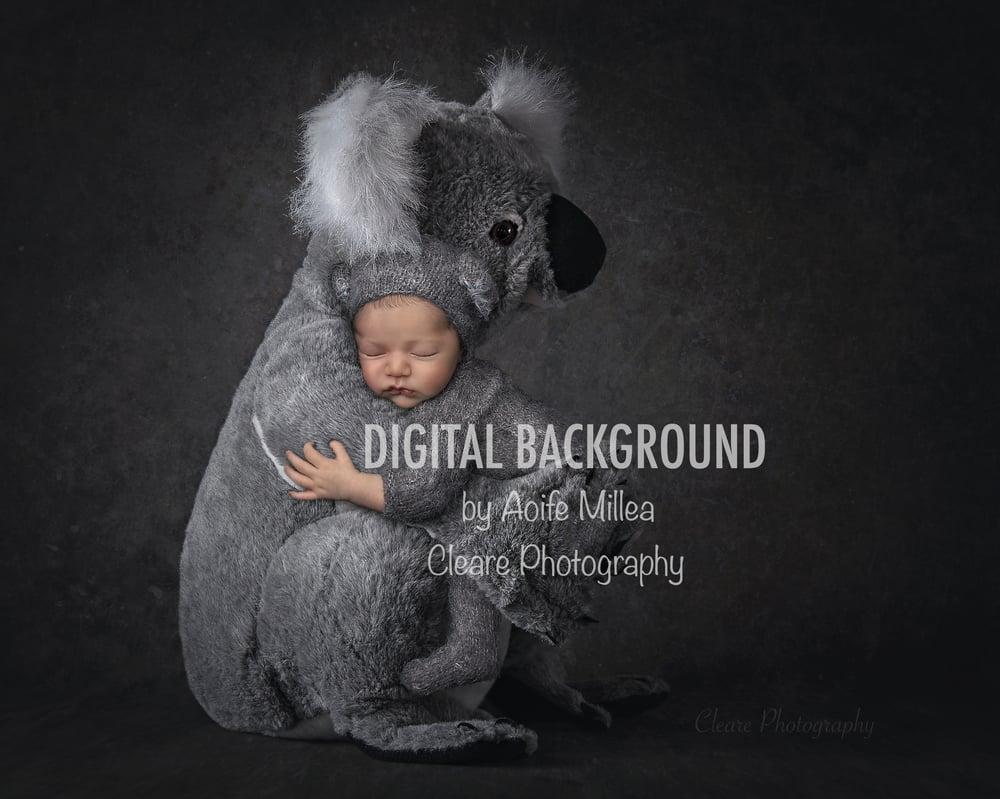 Image of koala cuddles layered newborn digital backdrop