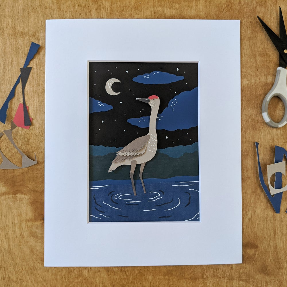 Image of Midnight Sandhill Crane