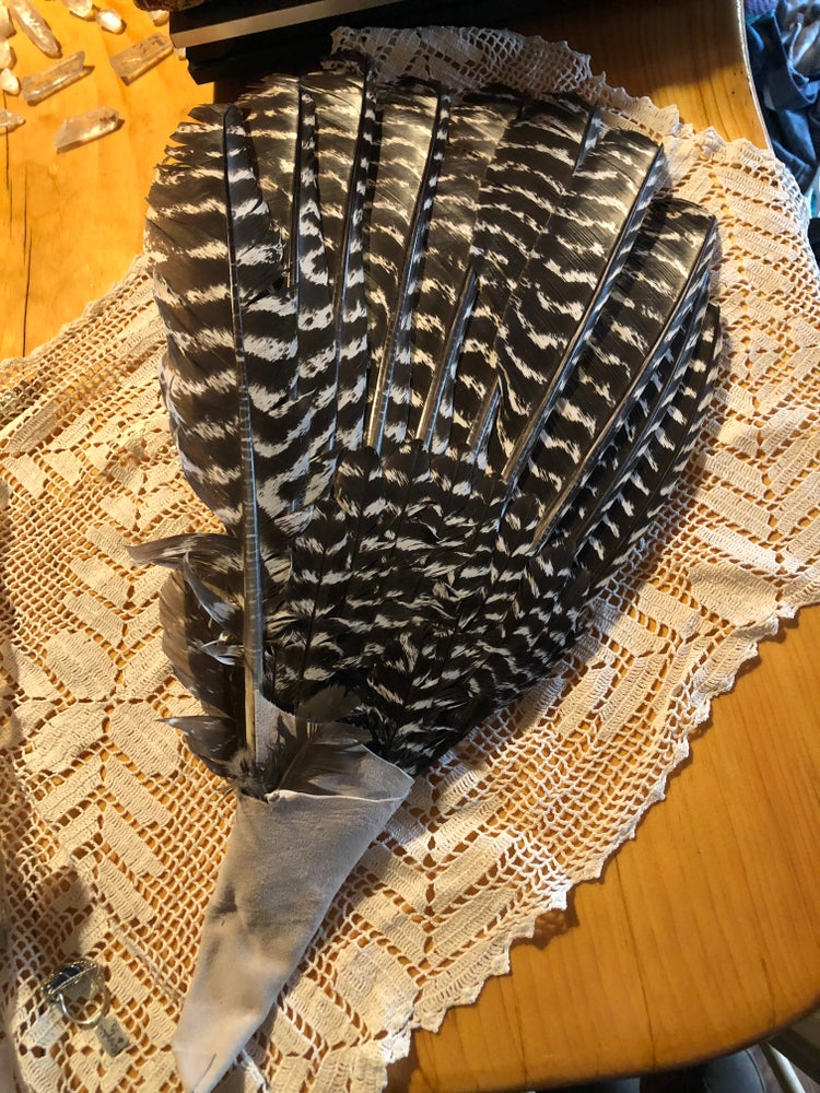 Image of Turkey Feather Smudge/ Ceremony  Fan wing
