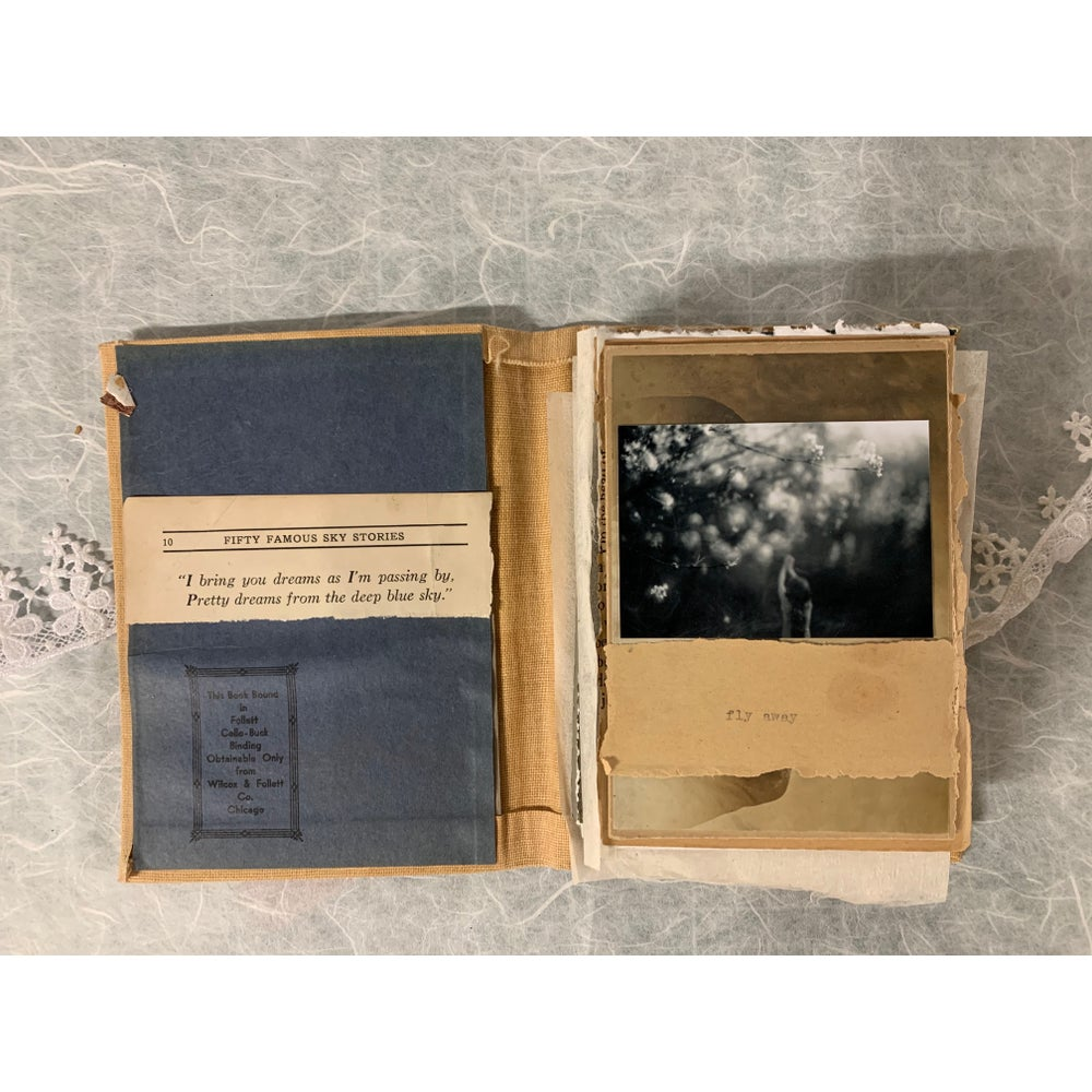 Image of Fly Away book #8