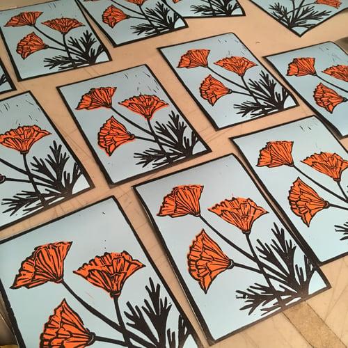 Image of California Poppies - by Jenn Rawling