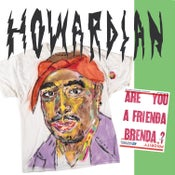 Image of Howardian - Are You A Frienda Brenda LP (mix colour vinyl)
