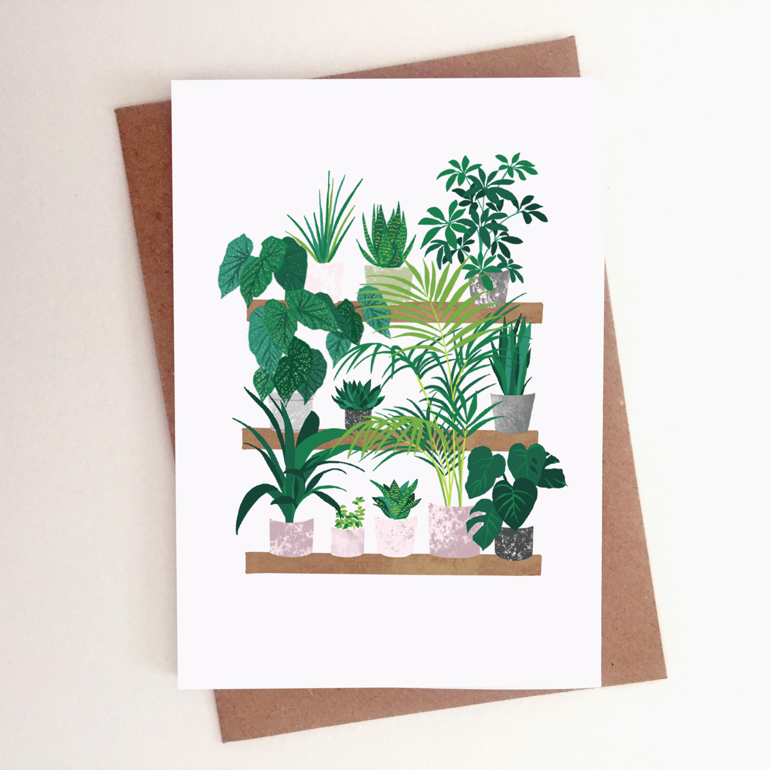 Image of House Plants Card