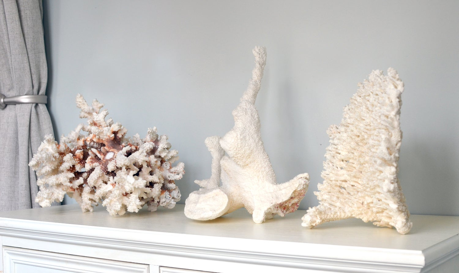 Image of Three monumental fragments of natural white coral