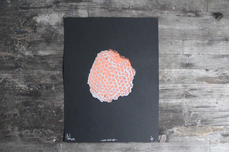 Image of Hive (Daylight)