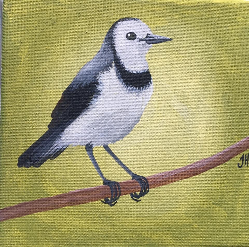 Australian Bird Original Paintings
