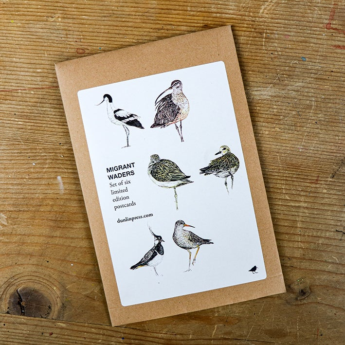 Image of Set of six limited edition wading and shorebird postcards